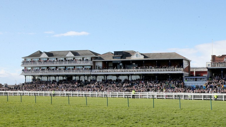Ayr: the racecourse is set for an 8am inspection on Tuesday morning