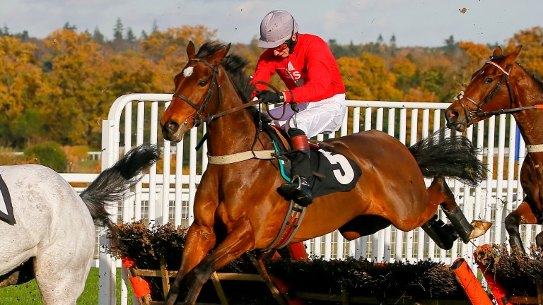 Our Merlin, in action at Ascot under James Best in November last year, has rattled up a hat-trick on his last three starts