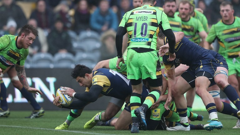 Worcester winger Bryce Heem goes over against Northampton