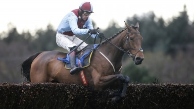 Ballyoptic: better than he showed at Cheltenham last time