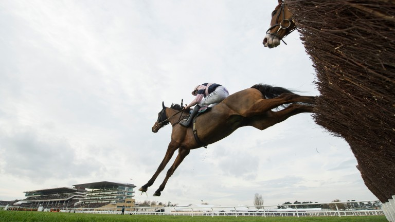 Cheltenham: ground described as heavy, soft in places for New Year's Day