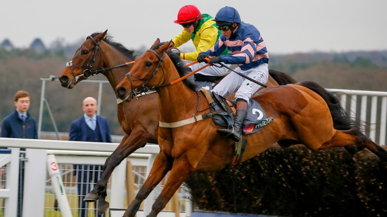 Benatar: beat Finian's Oscar at Ascot and finished third in the JLT at Cheltenham