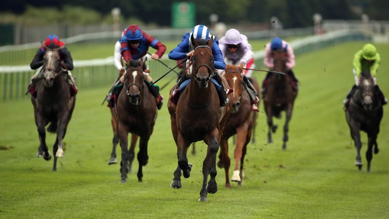 Faydhan: blitzes clear in a 6f Haydock maiden on his sole start at two