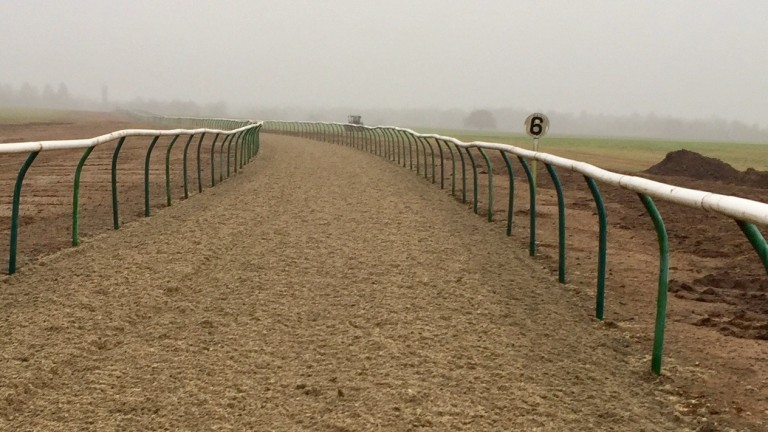 Al Bahathri Polytrack: set to be reopen after £500,000 investment