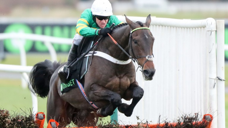 Buveur D'Air: has Leopardstown option as backup