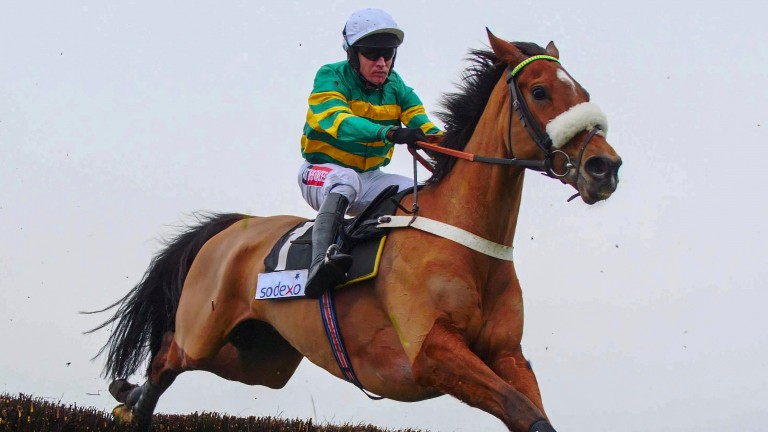 Coney Island makes an impressive return to the fray under Barry Geraghty in the Sodexo Chase