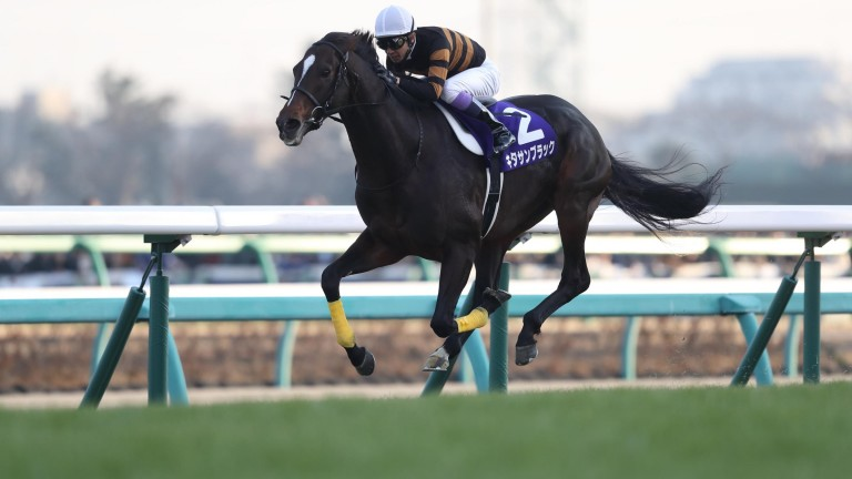 Kitasan Black: brought outstanding career to triumphant close in the Arima Kinen