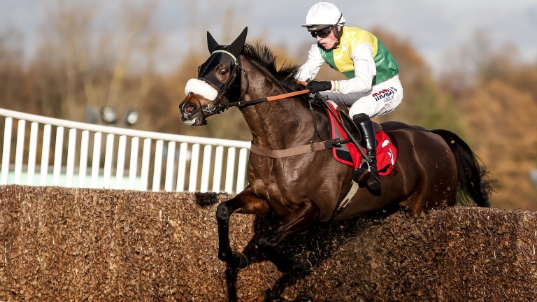 Touch Kick: chaser represents the in-form Paul Nicholls