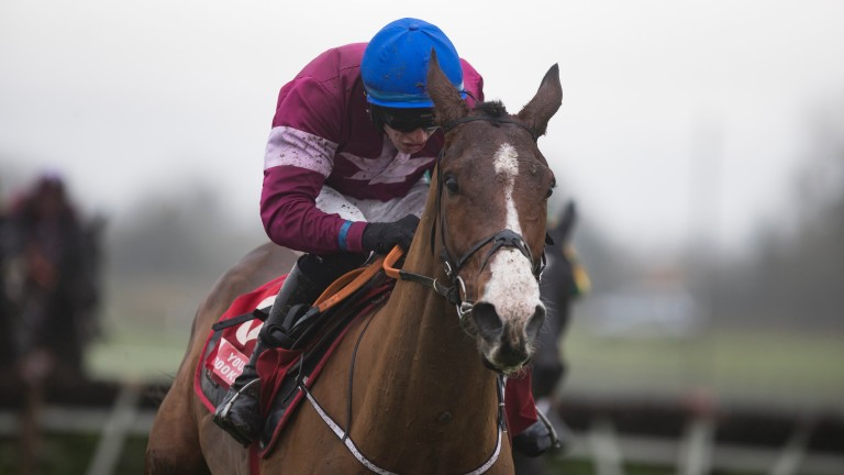 Mengli Khan: faces Getabird in a Grade 2 Novice Hurdle at Punchestown on Saturday