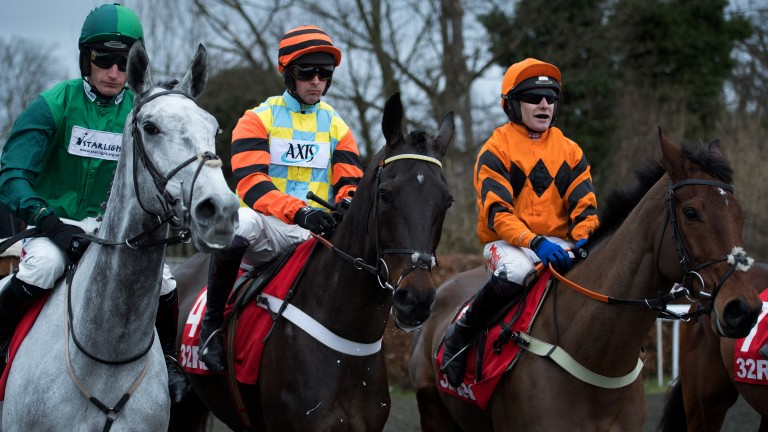 They're ready: Might Bite (centre) in between main rivals Bristol De Mai (left) and last year's winner Thistlecrack as the runners mill round at the start ahead of the King George VI Chase
