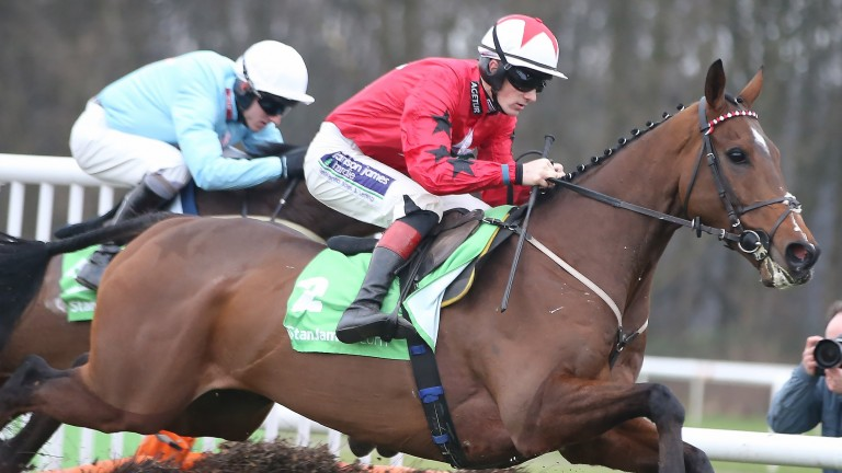 The New One: disapppointing he has not received an entry in Irish Champion Hurdle