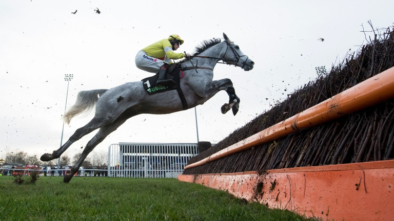 Politologue and Sam Twiston-Davies show jumping is the name of the game on his way to saluting another great grey Desert Orchid in the Grade 2 Chase named after him at Kempton