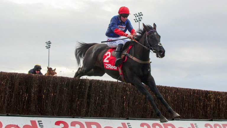 Black Corton soars over a fence en route to winning the Kauto Star Novices' Chase last year