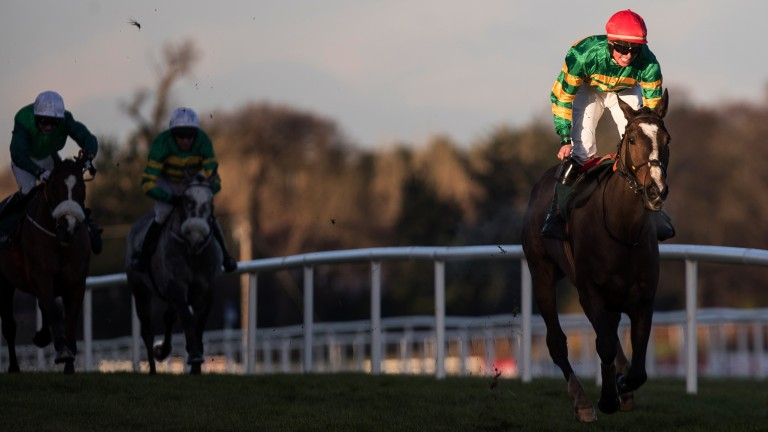 Anibale Fly, pictured with the Paddy Power Chase in the bag, is heading for the Irish Gold Cup at Leopardstown