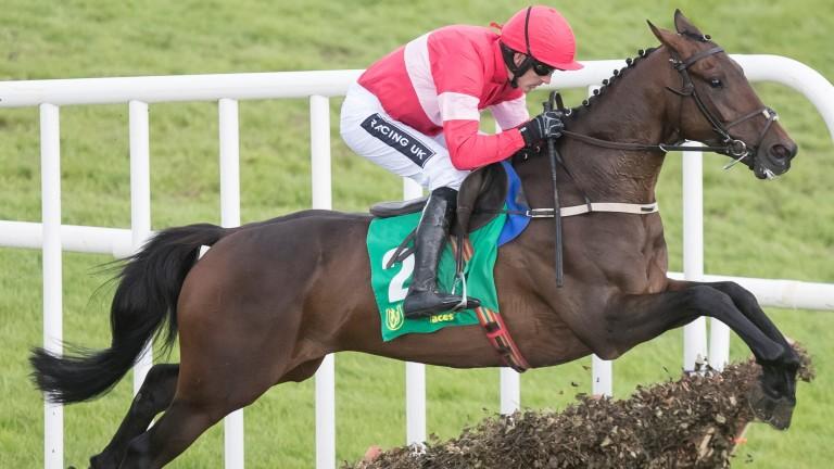 Fabulous Saga bids to follow up a 70-length success at Cork last time