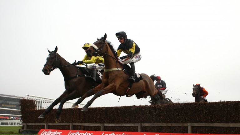 Fountains Windfall was unlucky to hit the deck at Kempton on Boxing Day