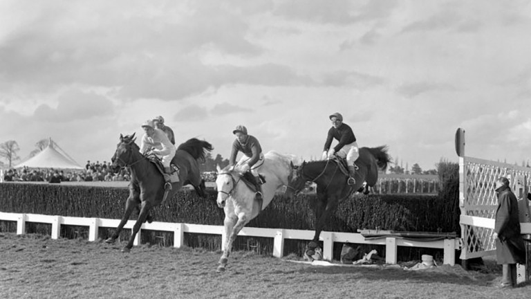 Fort Leney: won at Leopardstown by 15 lengths under a huge weight