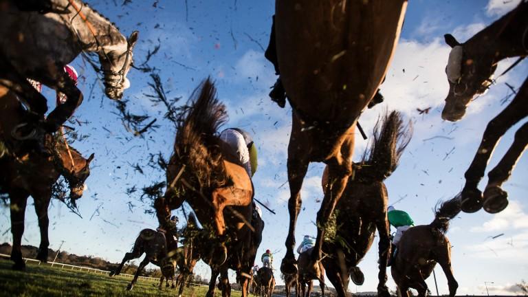 Leopardstown: has there been a coherent effort to attract local racegoers?