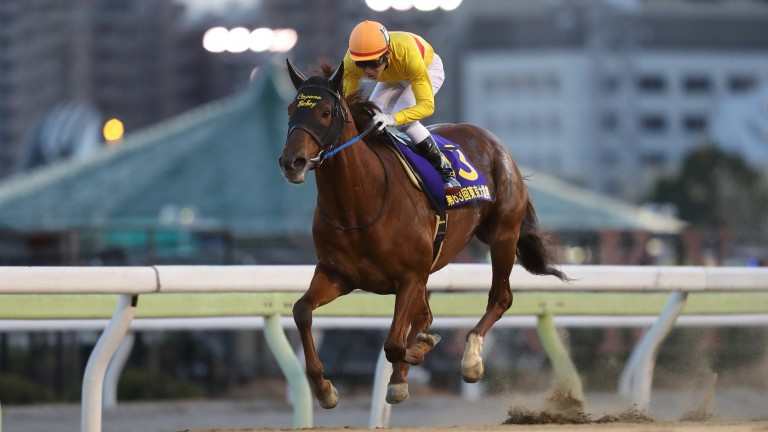 Copano Rickey in splendid isolation in the final strides of the Tokyo Daishoten