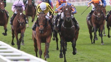 Big Orange (left of front pair) battles Order Of St George to land last year's Gold Cup