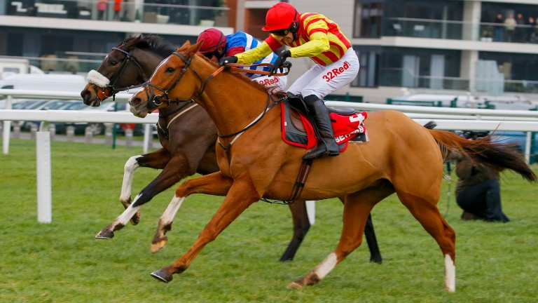 Hanging tough: Poetic Rhythm (near side) gets home from Mulcahys Hill and Adrian Heskin