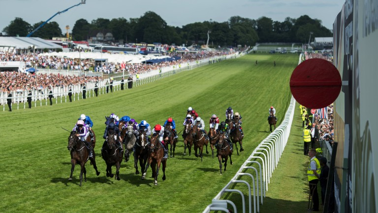 Late and great: the Aidan O'Brien-trained Wings Of Eagles (left) pounces close home under Padraig Beggy to land the Derby