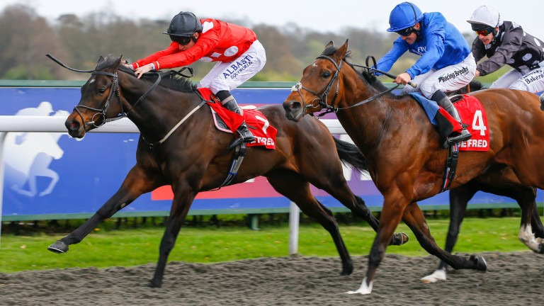 Absolute Blast and Luke Morris on on the way to Listed success over Linguistic at Kempton
