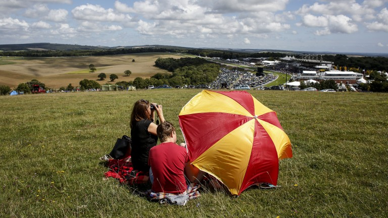 Vantage point: racegoers watch the action unfold on Trundle Hill on day one of Glorious Goodwood