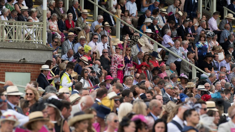 Awash with colour: the stands are packed on the July course for ladies' day at Newmarket
