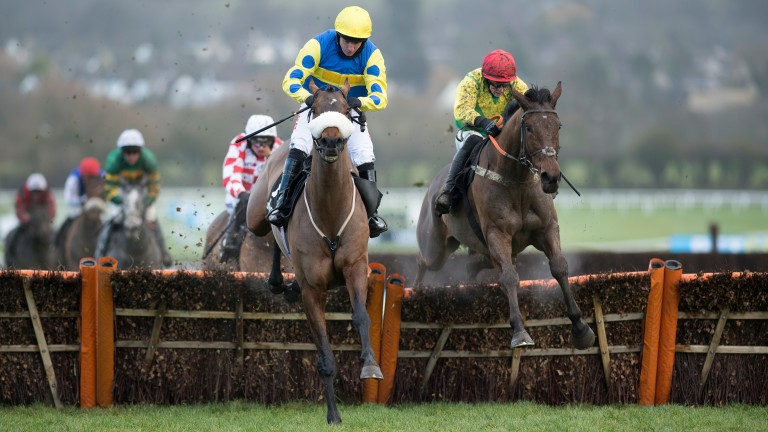 Tikkanbar and Noel Fehily (left) remain clear as they take the final flight in the opener at Cheltenham