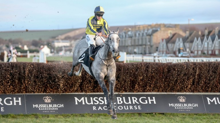 Mix Boy has had a productive time on the Flat and returns to chasing on Wednesday