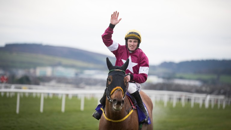 Road To Respect: will head to the Punchestown Gold Cup on Wednesday