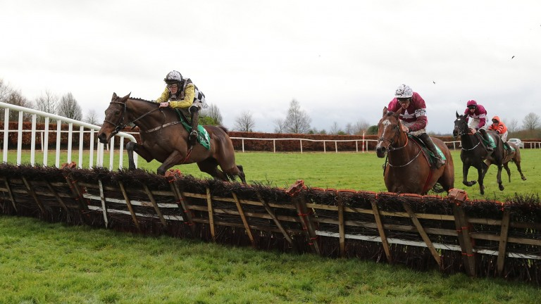 Next Destination: Willie Mullins' charge was a good winner at Naas