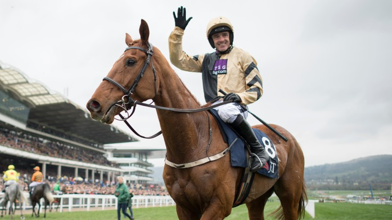 Yorkhill: will now be treated like a Champion Chase candidate by Willie Mullins