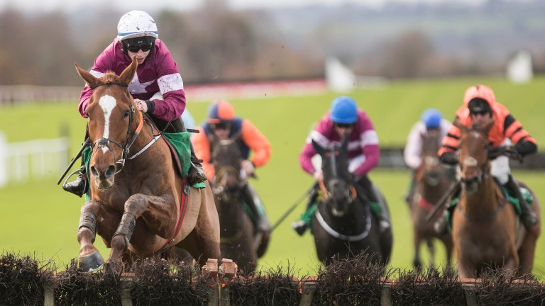 Samcro: set to tackle the Grade 1 Deloitte Novice Hurdle on Sunday