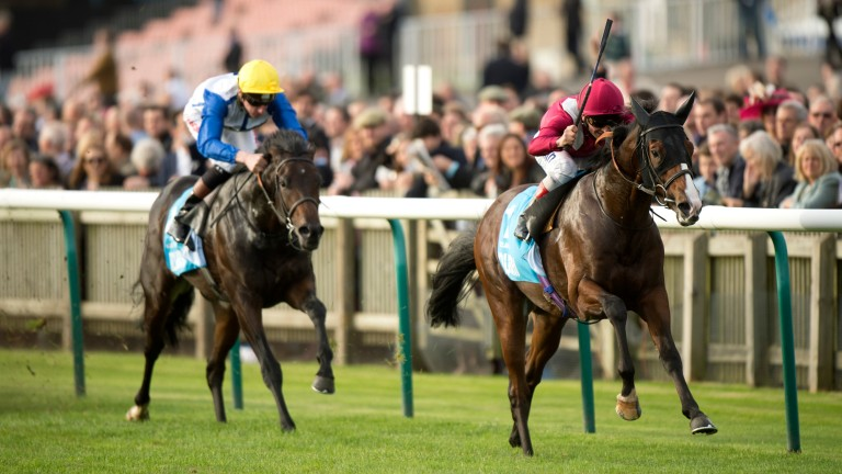 Belardo clears away from Kodi Bear to land the 2014 Dewhurst Stakes