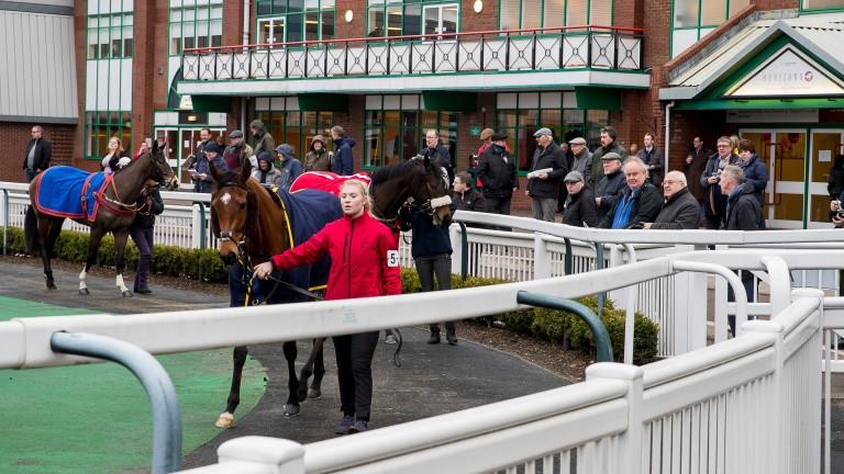 Wolverhampton: race on Wednesday