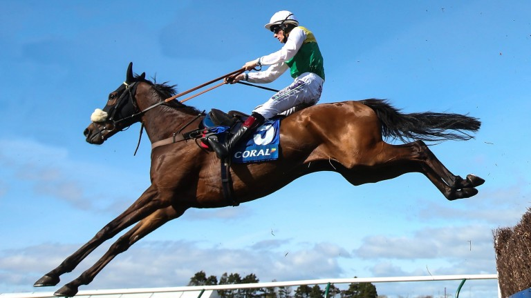 Vicente: will bid to become the first horse since Couvrefeu II in 1913 to win Scotland's biggest jumps race three years in a row