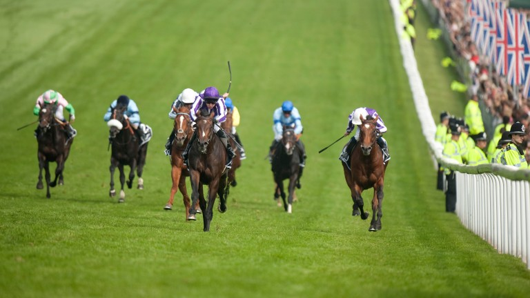 Camelot (purple cap) storms to a five-length success in the 2012 Derby