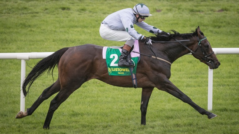 The imposing Tonkin clears away in the Jet O'Carroll Memorial EBF Maiden at Listowel