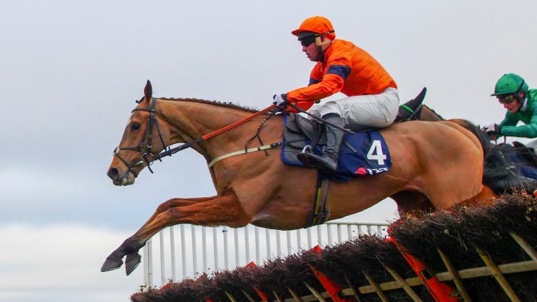 Sam Spinner and Joe Colliver deny Nicky Henderson's L'Ami Serge in the Long Walk Hurdle