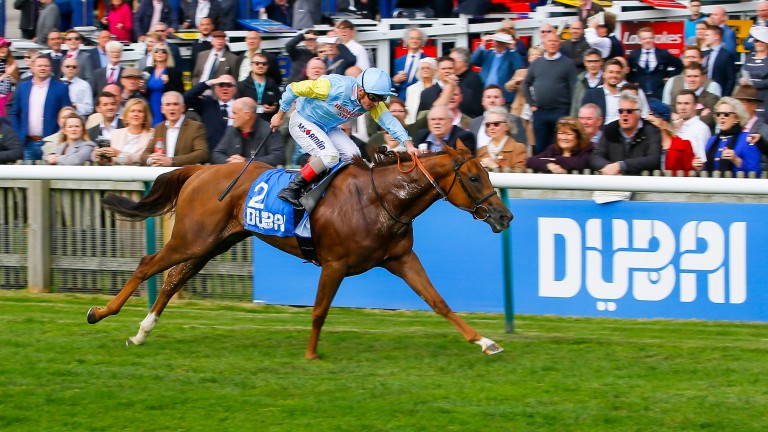 Altyn Orda: could be a live 1,000 Guineas hope after Wednesday's Nell Gwyn