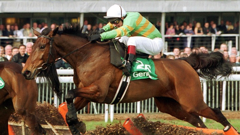 Supreme Novices' Hurdle winner Like-A-Butterfly was the festival's Irish banker in 2002