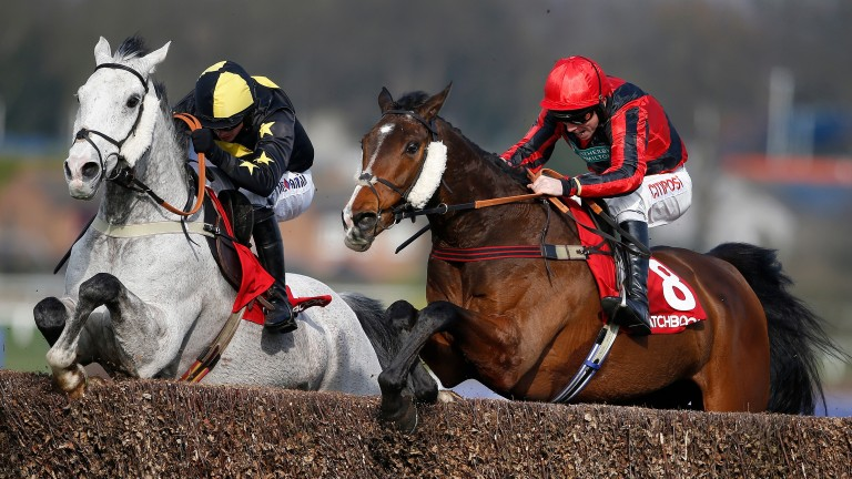 Shanroe Santos (right): will be attempting to make amends for his last run at Sandown, where he unseated Leighton Aspell