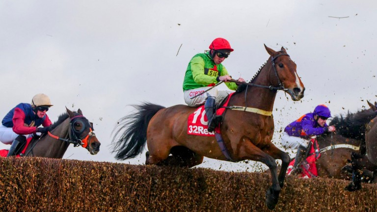 Buywise won a thrilling Veterans' Chase at Sandown on Saturday, but we don't need to have one at the festival