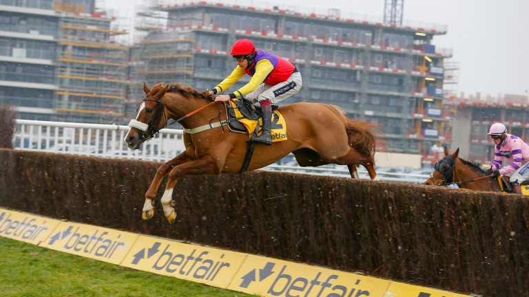 Native River: won the Denman Chase last year