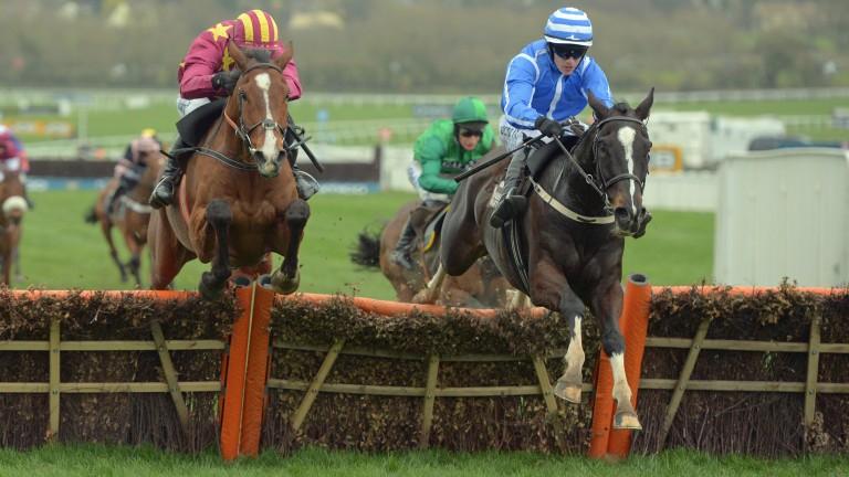 Penhill: won the Albert Bartlett on good ground last year