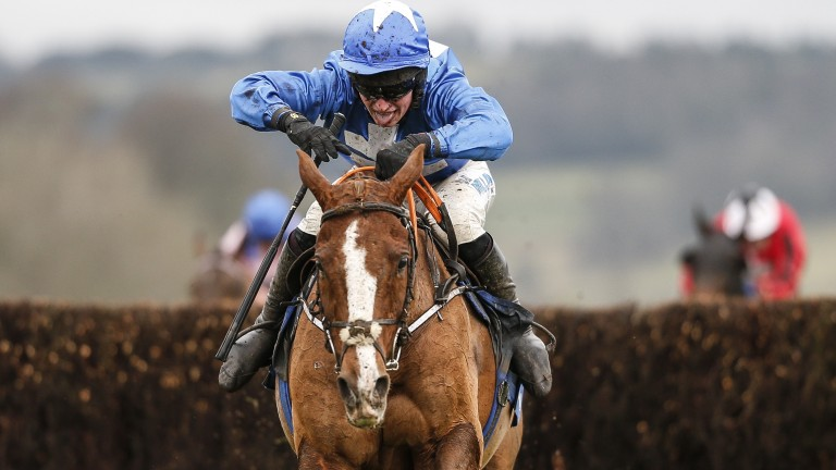 Raz De Maree is A1 after Chepstow, says Gavin Cromwell