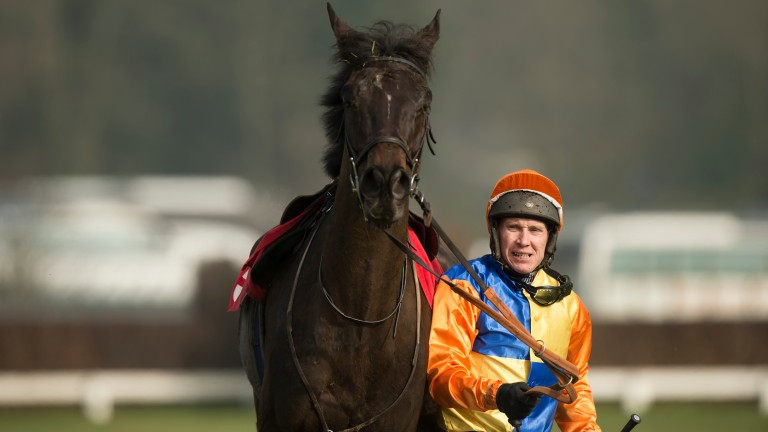 Flashjack and Richard Johnson after falling at the final flight in the 2m 4f novice handicap hurdleSandown 12.3.16 Pic: Edward Whitaker