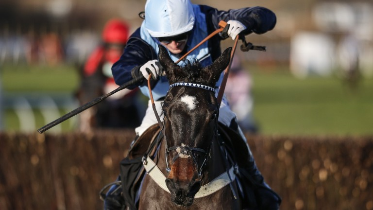 Vinnie Lewis and Harry Bannister on their way to victory in the Sussex National at Plumpton on Sunday